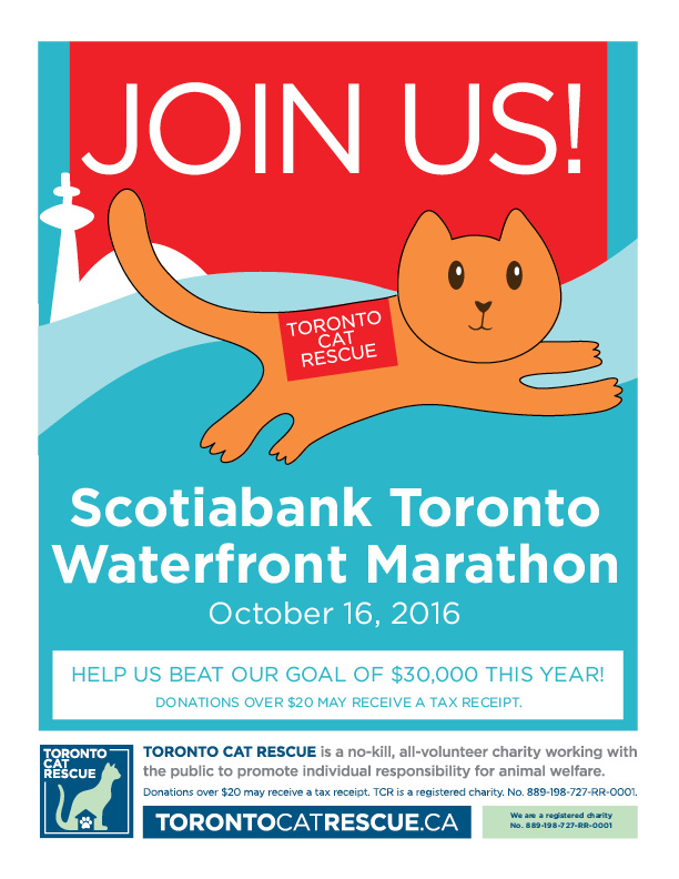 TCR_Scotiabank_2016_email