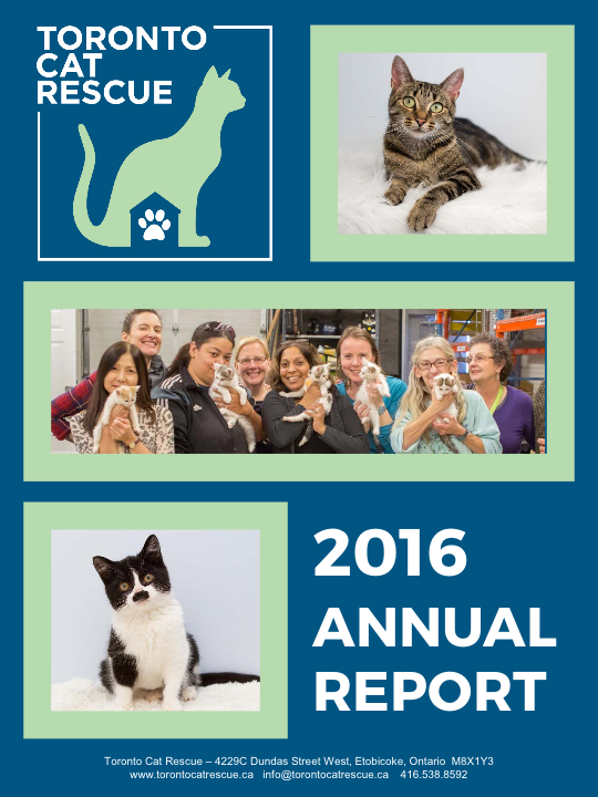 Toronto Cat Rescue - Annual Report 2016