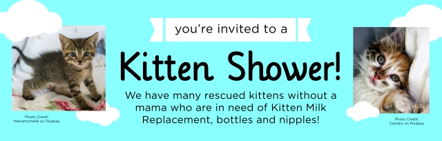 TCR_KittenShower